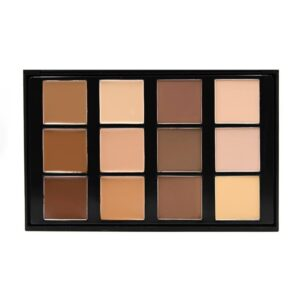 Crown Brush Pro Conceal and Contour Collection